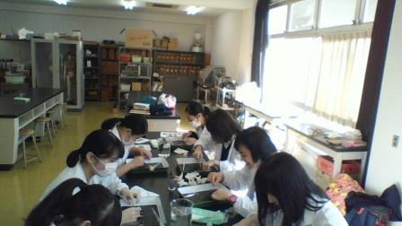 高校三年生の選択授業「生物研究...